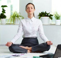 yoga-lanch